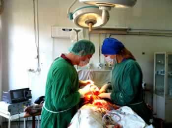 erecție după operația de bypass)